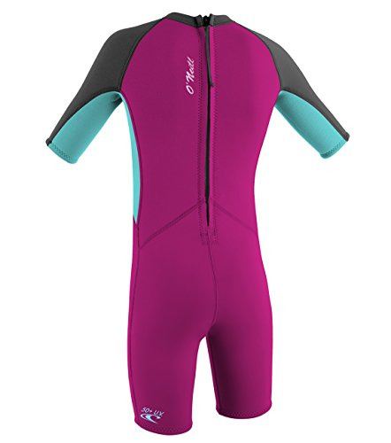 O'Neill Wetsuits Kinder Toddler Reactor Spring Neoprenanzug, Berry/Ltaqua/Graph, 4 Jahre - 3